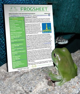 Frog, snake and Frogsheet